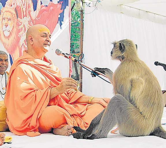 Hanumanji Listening to Ramkatha