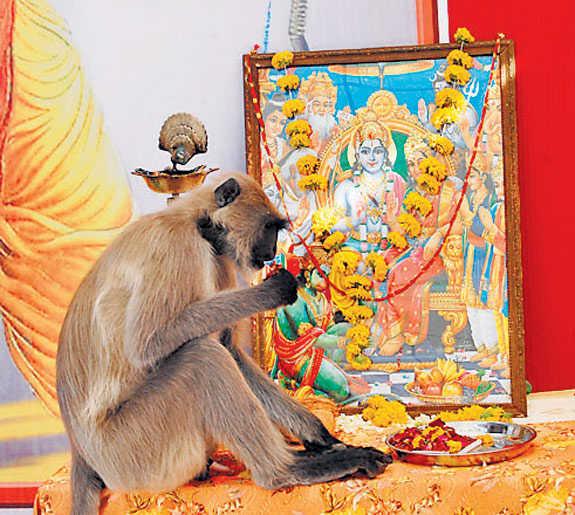Hanumanji at the feet of Lord Ram.